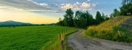 Užijte si krásnou letní dovolenou na samotě na Šumavě!